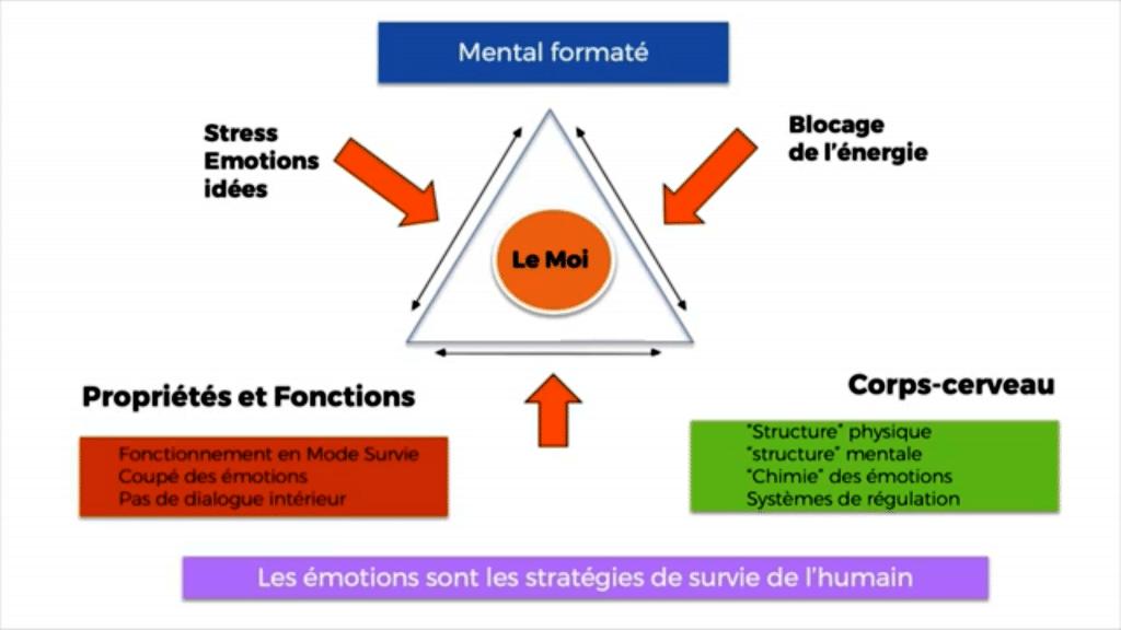 Formation-therapie-quantique-mental-formate