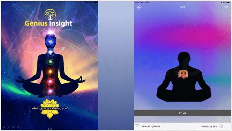 Genius_Insight_Naturoquantique_3